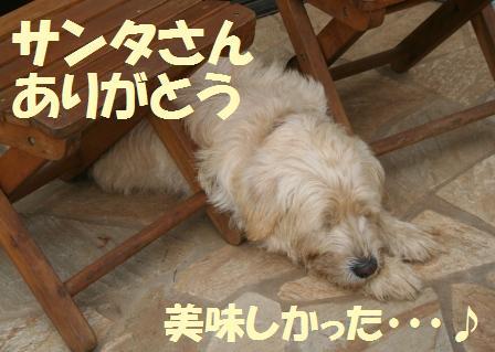 IMG_0816web.JPG